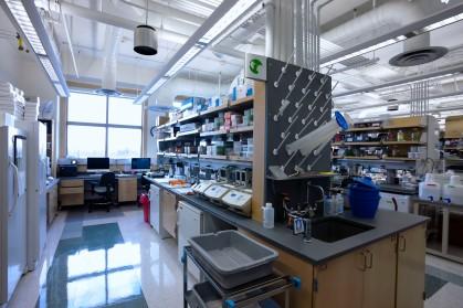 Lab spaces of Jennifer Trowbridge, Ph.D., Assistant Professor